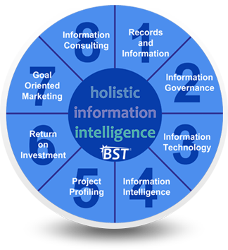 Holistic Information Intelligence